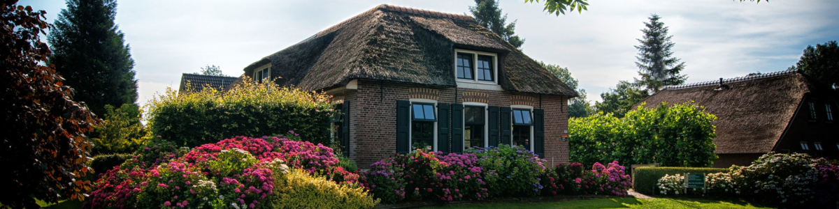 Widmer-immobilien-Umbau-(9)